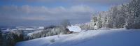 Germany,Baden-W??rttemberg,Schwarzwald,Breitnau,snowscape