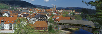 Germany,Baden-W??rttemberg,Forbach,Timber bridge
