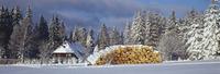 Germany,Baden-W??rttemberg,Schwarzwald,Thurner,Snowscape