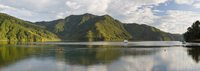 New Zealand,South Island,Marlborough Sounds,Fjord Scerery