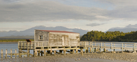 New Zealand,South Island,Okarito,Landing stage