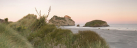 New Zealand,South Island,Port Puponga,Wharariki Beach at dawn