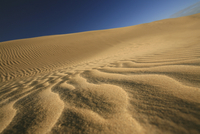 New Zealand, Desert scenery, dunes
