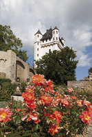 Europe, Germany, Hesse, View of electoral castle at eltville