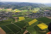 Europe, Germany, North Rhine-Westphalia, View of fields with Siebengebirge mountains in background
