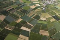 Europe, Germany, North Rhine-Westphalia, Aerial view of fields