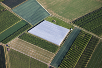 Europe, Germany, North Rhine-Westphalia, Aerial view of fields covered with plastic