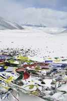 Nepal, Pashchimanchal, Gandaki, Annapurna Conservation Area, Snow covered flags on Thorong La (Thorung La)