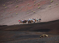 Spain, Canary Islands, Lanzarote, Timanfaya National Park, People riding on camels
