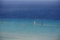 Spain, Canary Islands, Fuerteventura, Jandia, Windsurfer in sea at sotavento beach