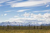 Canada, View of St Elias Mountains