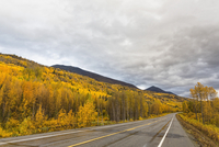 USA, Alaska, View of Richardson Highway