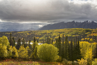 Canada, Yukon Territory, View of landscape
