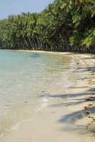 Thailand, Tropical beach with palm trees on Koh Mak Island at Mu Ko Chang National Park