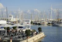 Spain, Mallorca, Palma, Bar cafe with terrace towards harbour 20025329102| 写真素材・ストックフォト・画像・イラスト素材|アマナイメージズ