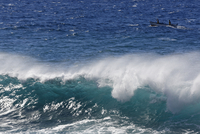Spain, Breaking of waves with fishing boat at La Gomera