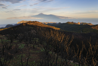 Spain, La Gomera, View of Alto de Garajonay mountain, Tenerife in background