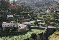 Spain, La Gomera, View of Banda de las Rosas near Vallehermoso