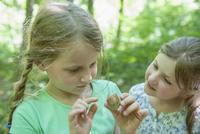 Germany, Bavaria, Munich, Girls examining snail, close up
