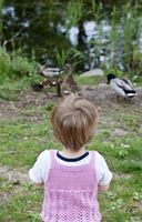 Germany, Girl feeding ducks by pond