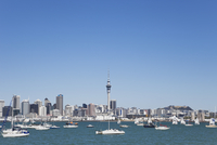 New Zealand, Auckland, View of city and Mount Eden in background