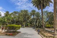 Spain, View of Parque Doramas