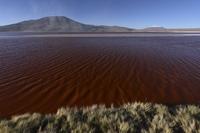 Bolivia, View of Laguna Colorada