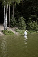 Germany, Brandenburg, Swan in lake
