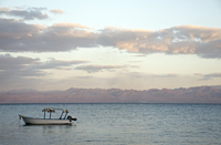 Egypt, View of red sea