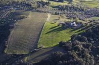 Spain, Ronda, View of field