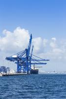 Spain, Andalusia, Algeciras, Cargo ship at pier