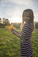 Little girl with autumn leaves in her hands standing on a meadow 20025330261| 写真素材・ストックフォト・画像・イラスト素材|アマナイメージズ