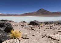 Bolivia, Atacama Desert, Laguna Verde