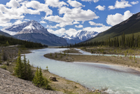 Canada, Alberta, Jasper National Park, Banff National Park, Icefields Parkway, mountain Tangle Ridge at Athabasca River