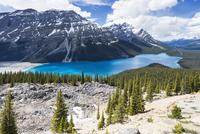 Canada, Alberta, Banff National Park, Peyto Lake seen from Bow Summit