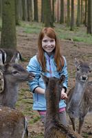 Germany, Bavaria, Munich, girl and his father feeding deers at wildlife park 20025330529| 写真素材・ストックフォト・画像・イラスト素材|アマナイメージズ