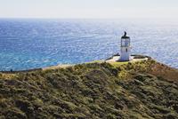 New Zealand, Northland, Cape Reinga, Lighthouse 20025330587| 写真素材・ストックフォト・画像・イラスト素材|アマナイメージズ
