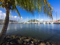Caribbean, Lesser Antilles, Saint Lucia, Rodney Bay, Marina and sailing yachts