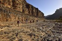 Algeria, Tassili n' Ajjer, Sahara, group of people hiking in canyon