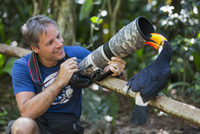 Brazil, Mato Grosso, Mato grosso do Sul,  common toucan, Ramphastos toco, nibbling at camera of a photographer 20025330846| 写真素材・ストックフォト・画像・イラスト素材|アマナイメージズ