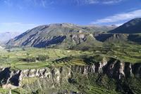 South America, Peru, Colca Canyon