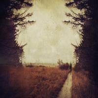 Belgium, Longfaye, silhouette of a man walking on trail through High Venn 20025330911| 写真素材・ストックフォト・画像・イラスト素材|アマナイメージズ