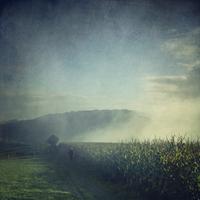 Jogger running in misty landscape at sunrise 20025330920| 写真素材・ストックフォト・画像・イラスト素材|アマナイメージズ