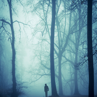 Silhouette of a man in foggy wood at back light