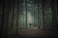 Person walking in dark forest, alienation