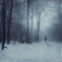 Germany, near Wuppertal, Man walking in snow covered forest, digital manipulation