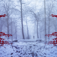 Germany, near Wuppertal, Man on forest path in winter, digital manipulation