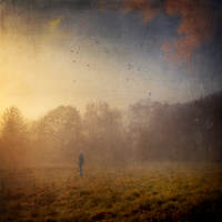 Germany, near Wuppertal, man standing on meadow in the morning, fog, digitally manipulated