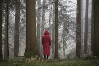 Austria, woman standing alone in the wood