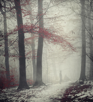 Man on forest path in winter